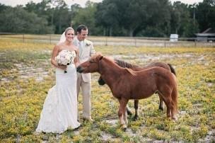 Poplar Grove Wedding Pictures